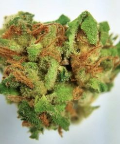 Buy-Blueberry-marijuana-weed-online