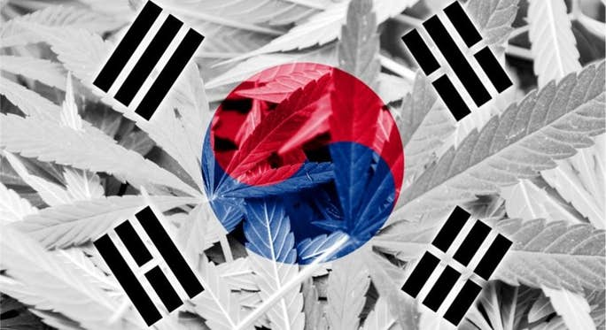 South-KOrea-legalizes-Cannabis