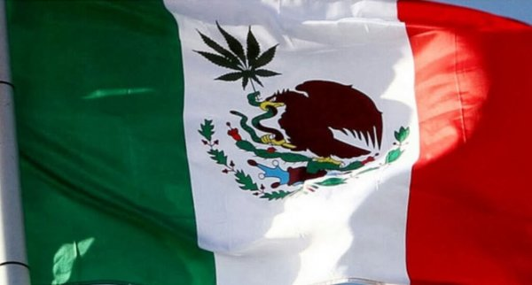 mexico-legalizes-cannabis-medical-marijuana